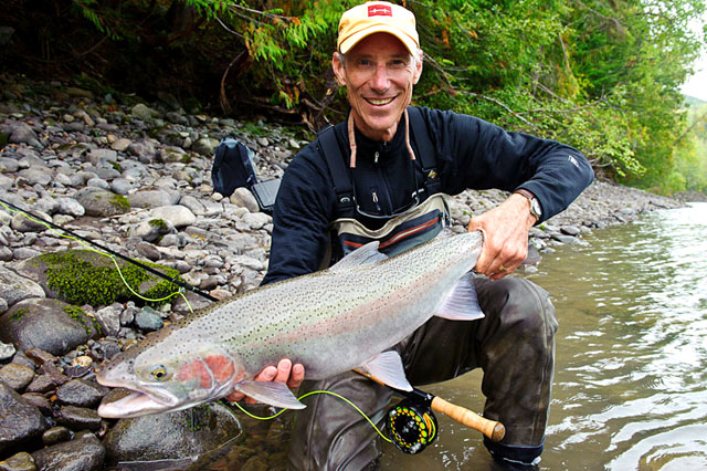 Bulkley River Steelhead In Full Swing
