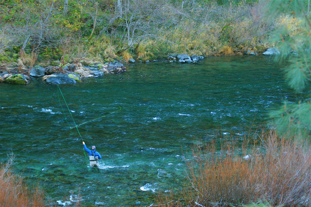 Pacific northwest fly water travel 39 s reel news 800 552 for Trinity river fishing