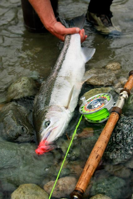 image of the week fly water travel s reel news 800 552